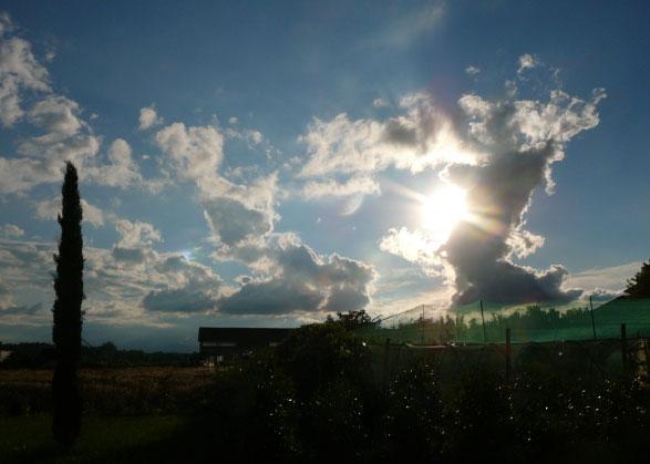 Agriturismo Poirino Il Mondo Fricandò